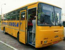 Więcej o: Aktualny rozkład jazdy autobusów