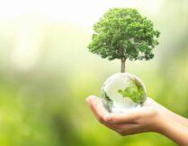Więcej o: Dzień Ziemi 2021